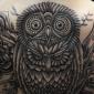 tatouage_village_pierre_gilles_romieu_hibou