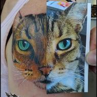 david_psykedeklik_meilleur_tatoueur_montlucon_convention_tatouage_france