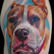 Carlos rojas tatoueur festival chaudes-aigues