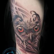 logan_meilleur_tatoueur_avignon-studio_tatouage_graphicaderme_convention_tatouage_cantal