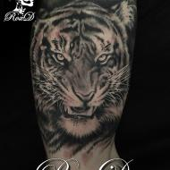 roxd_meilleure_tatoueuse_var_convention_tatouage_cantal_ink